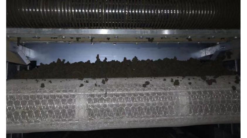 污泥干燥处理中的难点